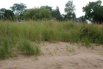 August beach - 07