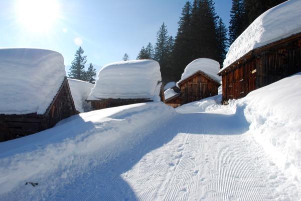 Snow  - 10
