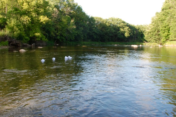 River -  - 4
