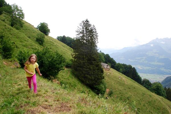 Hike -  - 6