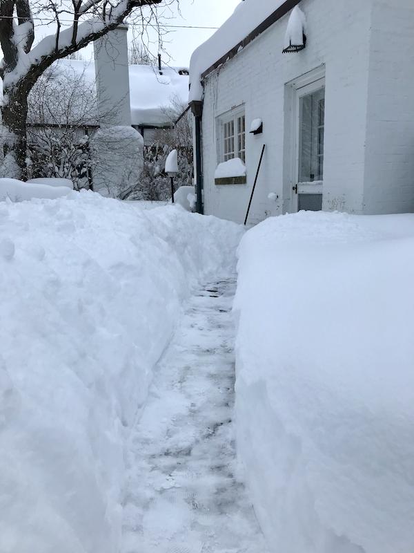 So much snow - 2