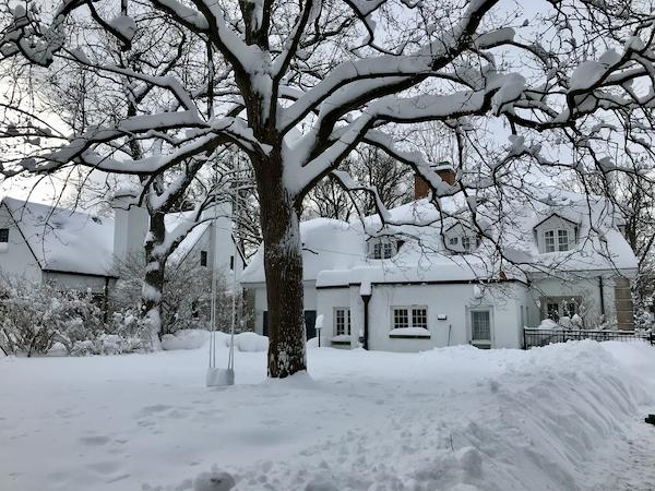 So much snow - 5