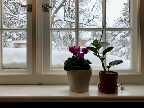 So much snow - 1 (1)